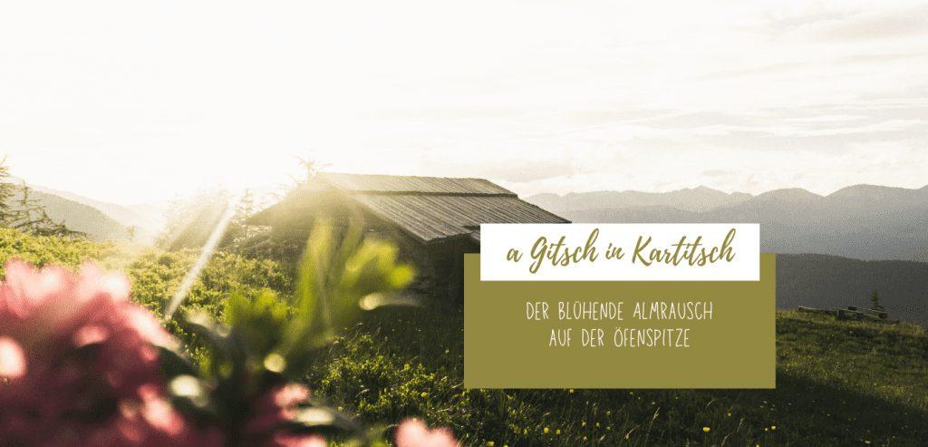a Gitsch in Kartitsch - Öfenspitze